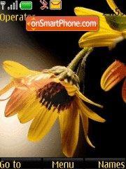 Yellow Flowers theme screenshot
