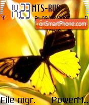 Yellow Fly es el tema de pantalla