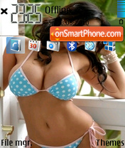 Denise Milani theme screenshot