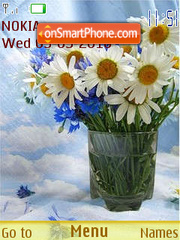 Bouquets of camomiles theme screenshot