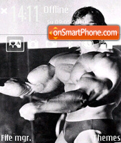 Arnold theme screenshot