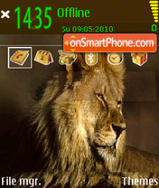 African Lion theme screenshot