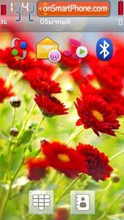 Red flowers 02 theme screenshot