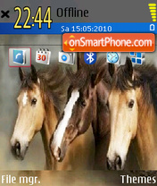 Mustangs tema screenshot