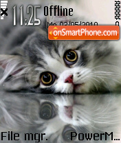 Kitten 07 theme screenshot