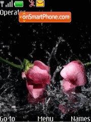Roses in Water theme screenshot