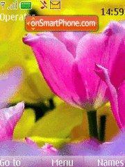 Tulips 07 theme screenshot