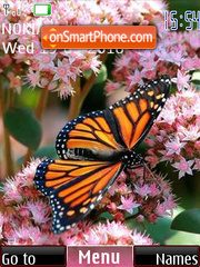 Butterfly on colors theme screenshot