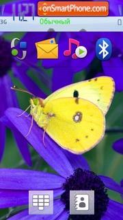 Butterfly on flower tema screenshot