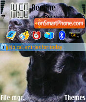 Labrador N73 theme screenshot