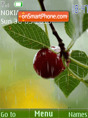 Скриншот темы Raindrops on the cherry(swf 2.0)