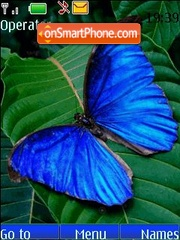 Blue butterfly animated theme screenshot