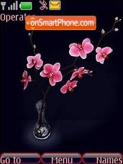 Orchid Theme-Screenshot