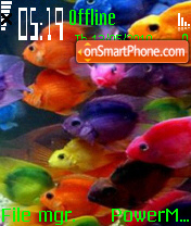 Colorful Fish 01 theme screenshot