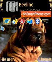 Sharpey N73 theme screenshot