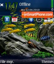 Aquarium 04 theme screenshot