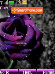 Скриншот темы Violet rose