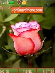 Lonely rose theme screenshot