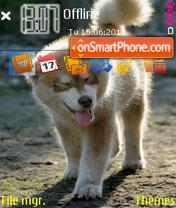 Malamute theme screenshot