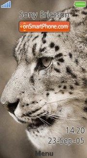 White Cat 04 es el tema de pantalla