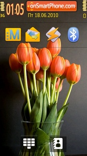 Colour Tulips theme screenshot