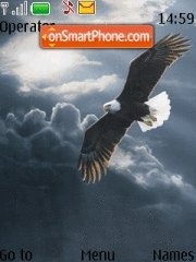 Bald Eagle 01 theme screenshot