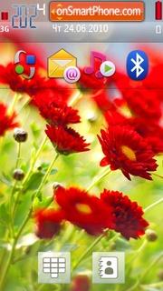 Red Flowers 03 theme screenshot