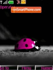 Pretty Lady Bug theme screenshot