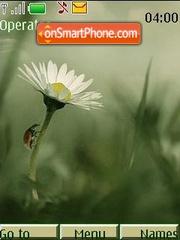 Fotoart summer theme screenshot