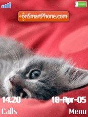 Pensive Kitten es el tema de pantalla