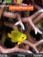 Yellow Fish theme screenshot