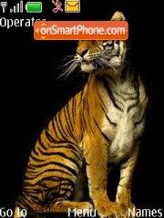 Wild Cat 01 theme screenshot