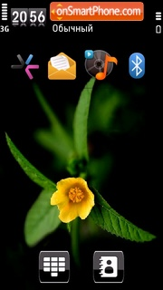 Nice Flower2 theme screenshot