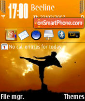 Kyokushin 73 theme screenshot