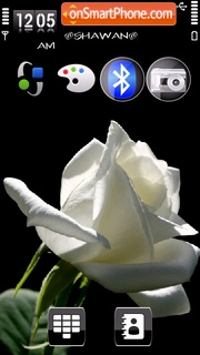 White rose by Shawan theme screenshot