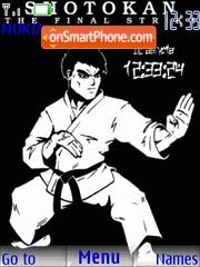 Shotokan karate theme screenshot
