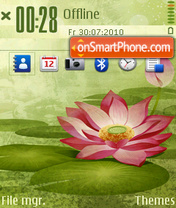 Lotus of summer theme screenshot