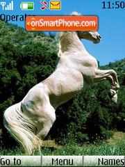 White Horse tema screenshot