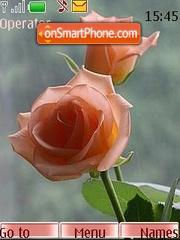Скриншот темы Charm roses