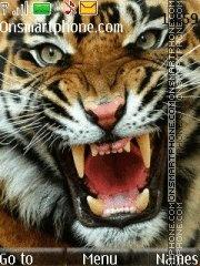 Tiger With Tone theme screenshot