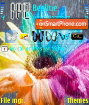 Rainbow Flower tema screenshot