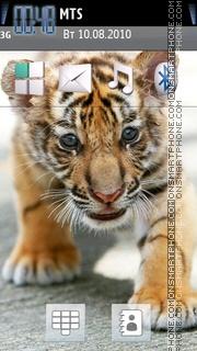 Little Tiger tema screenshot