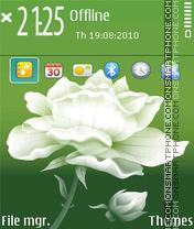 Flower q fp1 es el tema de pantalla