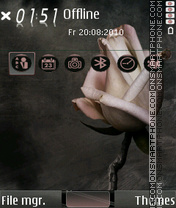 Rose Heart 02 theme screenshot
