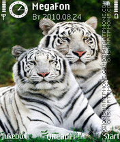 White Tigers theme screenshot