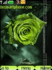 Green Roses theme screenshot