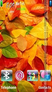 Capture d'écran Autumn 2010 thème