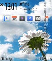 White Flower 04 theme screenshot