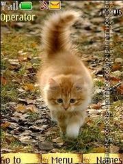 Autumn kittens theme screenshot