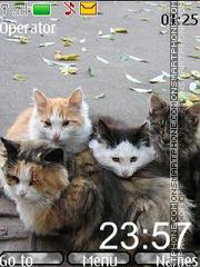 Скриншот темы Autumn cats